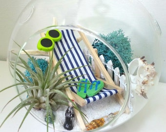 Large Air Plant Terrarium Kit Hanging Air Plant Terrarium Relaxing At The Beach Birthday Gift Thank You Gift