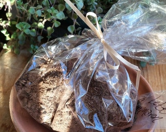 Miniature garden planter, fairy garden, indoor microgreens pottery, windowsill garden