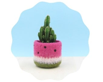 Watermelon vase / Felt succulent planter / summer gift / felted planter / cactus vase / housewarming gift / cabin decor / gift for her