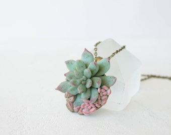 Green Blue Pink Succulent Pendant Necklace Wholesale Succulent Plants Metal Basis Base Pendant Jewelry Succulent Wedding Birthday Gifts