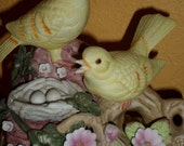 Love Story/MUSIC BOX/Pair of Birds At The Nest/Pigeons/Song Birds/Yellow Finches