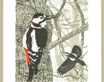 Woodpecker bird art print - Great Spotted Woodpecker - Original limited edition hand cut linocut print.