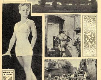 WW2 Guinea Gold Newspapers World War II - Huge 6-DVD eBook Military History Set!!