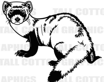 FERRET Vinyl Decal Sticker decor #WL147