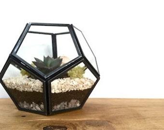 Geometric Terrarium Kit