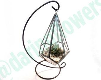 Polygon Terrarium / Hanging glass terrarium with succulents / Low maintenance plants / Table plants