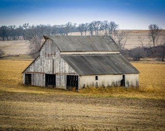 Fall White Barn Photo, Country Decor, Wall Art, Old Barn Photography, Nebraska Farm, Autumn Farm Decor, Country Landscape