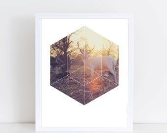 Magical Deer Art Print - Inspirational Forrest Nature Wall Art, Colorful Vintage Sunset Geometric Photography Art, Printable Animal Poster