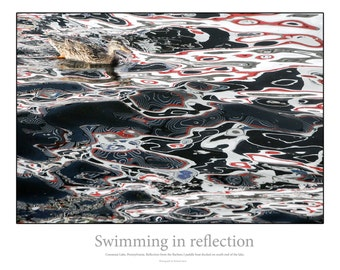 Swimming in Reflection
