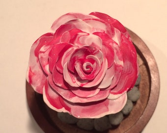 Red and White swirled Rose in a glass dome, Beauty and the beast rose, Beauty and the Beast, beauty and the Beast wedding, cake topper, rose