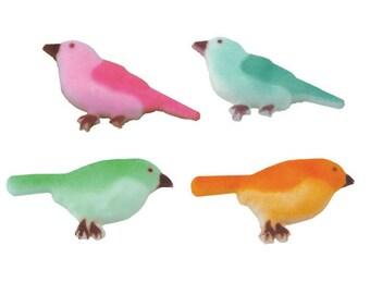 12 Bright Bird Pre-Made Ready To Use Edible Cupcake Sugar Decorations