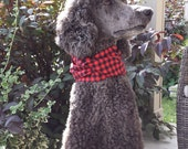 dog infinity scarf, dog accessories, infinity scarf