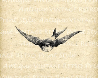 Digital SWALLOW BIRD Vintage Flying Antique Clip Art Design Image Instant Download Iron on Transfers Black Illustration HQ 300dpi No.20024