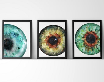 Set of 3 Iris Prints with Blue, Green and Hazel - Eye Art - Eye Anatomy - Optometry and Ophthalmology Art - Iris Art Set