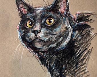 Commission Expressive Pet Portraits Original Art Drawings