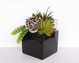 Artificial Succulent Arrangement - Succulents