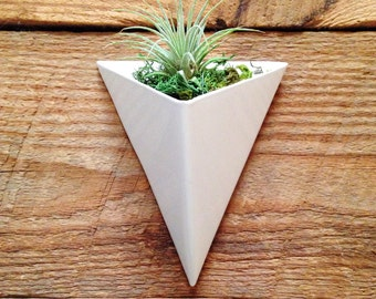 Modern Triangular Indoor/Outdoor Succulent Wall Planter, White Powder Coated Finish