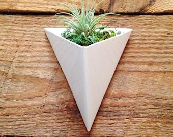 Modern Triangular Indoor/Outdoor Succulent Wall Planter, White Powder Coated Finish