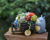 Succulent Planters / Indoor Pots Totoro Car Plant Pots Miniature Garden Container Succulent Terrarium Miniature Garden Containers