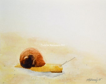 Snail Art Print of Original Watercolor Painting - 8x10 Snail Art