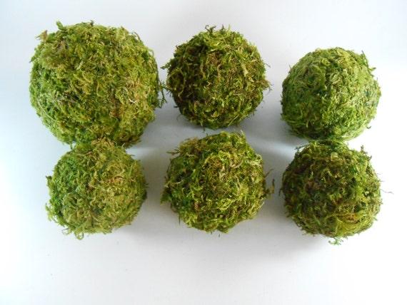 Moss Balls Set Of 6 Rustic Decor Moss Covered Balls