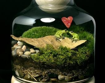 Frog Prince Terrarium-Kissing Frogs-Valentine's Day Terrarium-TerraSphere
