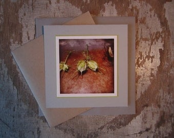 Seed Pods, handmade, greeting card, blank, square, photo