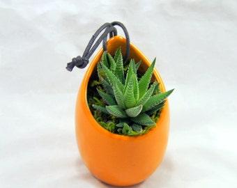 Dark Terracotta Ceramic Hanging Succulent Planter