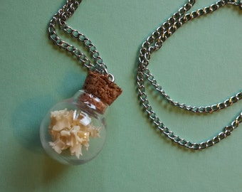 Snake Vertebrae Necklace, Curiosity Vial Necklace, Vulture Culture, Bone necklace, Taxidermy Jewelry