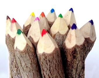 Twig Pencils Colored Pencils Wood Pencils Color Pencils Rustic Pencils Gift Set Tree Branch Pencils Funny Pencils Woodland Baby Shower