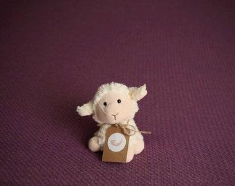 Stretch Lace Newborn Backdrop Fabric