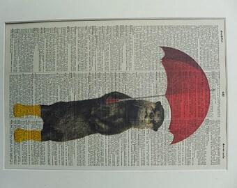 Otter Print No.19, otter poster, otter print, otter wall decor, sea otter, funny animals, funny otter, dictionary art, boyfriend gift