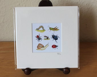 Insects Mounted Mini Print, Invertebrates, Bugs, Mini Beasts Small Square Artwork, Nature, Wildlife, Ready for Framing (Frame not supplied).
