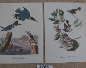 Vintage Audubon Bird Prints John James Audubon Best Loved Bird Paintings Handsome Full Color Prints Kingfishers and American Redstarts Art