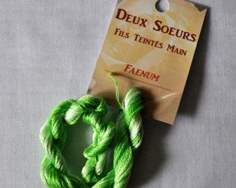 Faenum hand dyed yarn