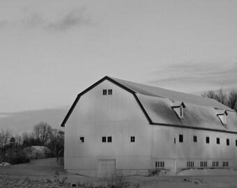 Northern Illinois Winter Photographs