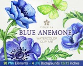 Blue Anemone WATERCOLOR clip art. 20 PNG floral elements 4 digital paper backgrounds. Elegant garden flowers, green leaves. Read about usage