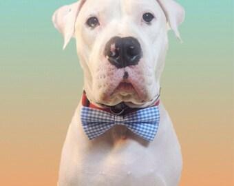 Dog Bow Tie/ Handmade Dog Bow Tie/Neckwear/Pet supply/Pet accessories/Dog Accessory
