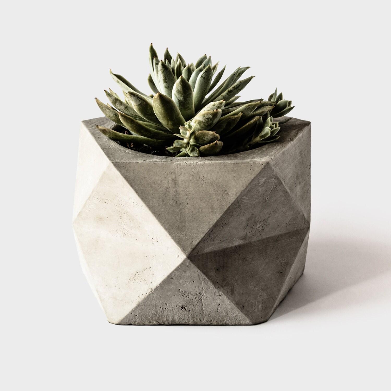 Pentoid Large Concrete Geometric Planter For By Thearmoryco
