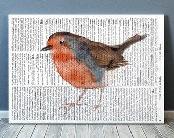 Animal poster Bird print Dictionary print Robin decor RTA2132