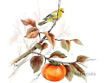 Watercolor bird print. Bird art print. Bird painting. Bird watercolor. Bird Giclée print. Persimmon Giclée print. Yellow Bird and Persimmon