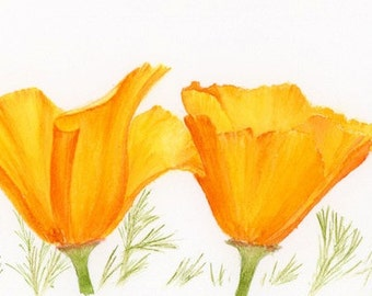 Watercolor poppies, watercolor flower print of California poppy painting, watercolor poppy print wall decor, flower art home decor, 4x10, F4