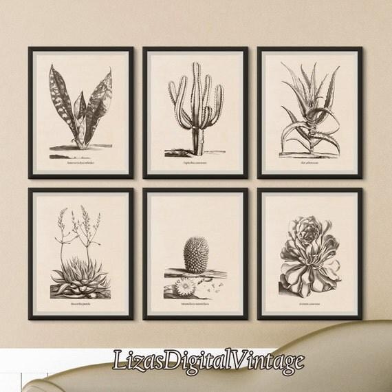 Set of prints, Instant download printable art, Set of 6 prints, Aloe, Haworthia, Mammillaria, Aeonium, Euphorbia, Sansevieria, Succulent art