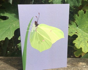 Brimstone butterfly greeting card - blank inside