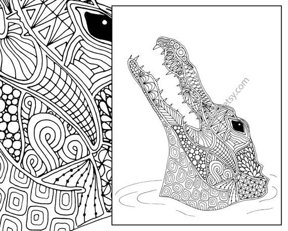 animal coloring page alligator coloring page adult coloring. Black Bedroom Furniture Sets. Home Design Ideas