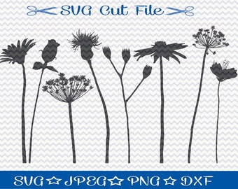 Wildflower SVG File / SVG Cut File /  Wild Flowers / SVG Download / Silhouette Cameo / Cricut / Vinyl Cutting