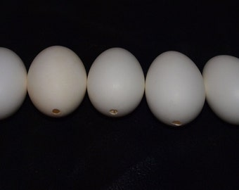 Five (5) un-painted, Single hole - Blown Duck Eggs for crafts