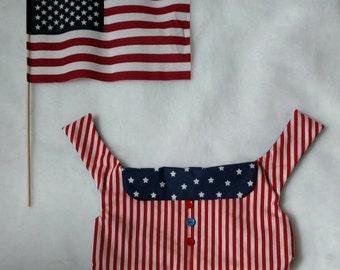 4th of July dog shirt