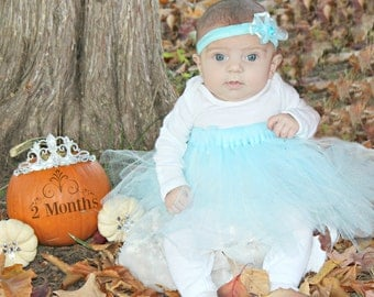 Simple Cinderella Inspired TUTU DRESS