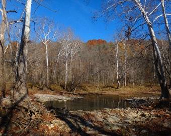 Late Fall Creek